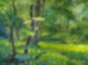 Summer_in_Fullersburg_Woods-original_rgl