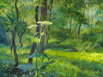 Summer_in_Fullersburg_Woods-original_rgl