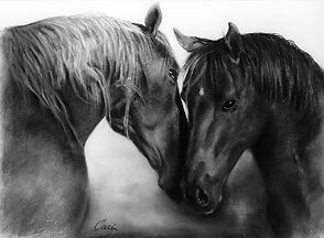 web_charcoal_horse_whispering_18X24_sold