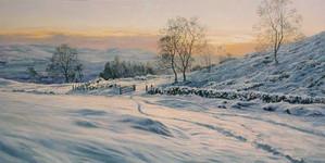 snow-scene_open-gate_54.jpg