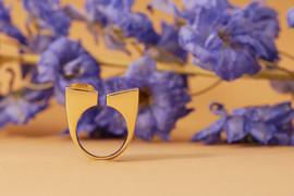 Ring Citrin-Copyright TUKOA.jpg