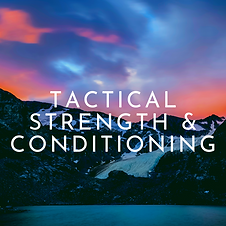 Tactical Strength and Conditioning Consulting