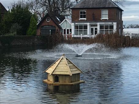 The Duck House returns!