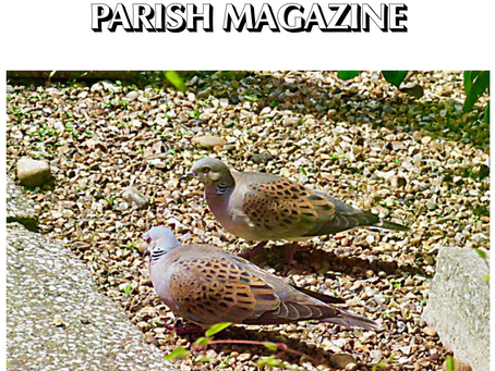 Goudhurst & Kilndown Parish magazine - June