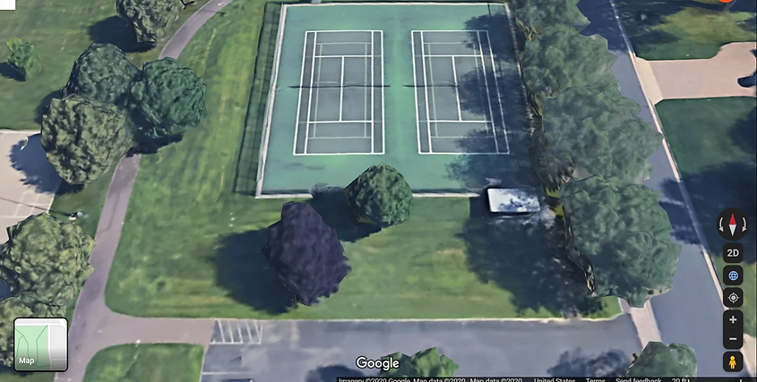 Lions Court.png