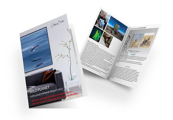 Catalogue Mock up.jpg
