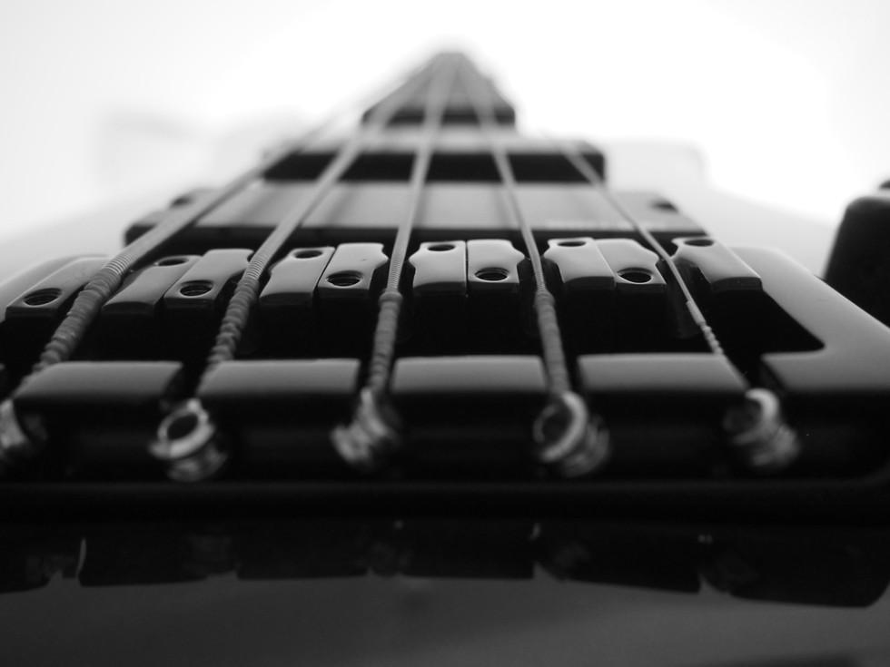 A bass view