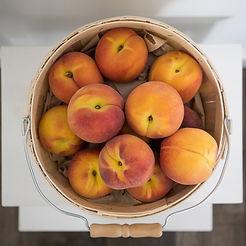 Peach_Webbies-1-Sml.jpg
