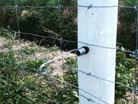 Not your average Electric fence Pigtail