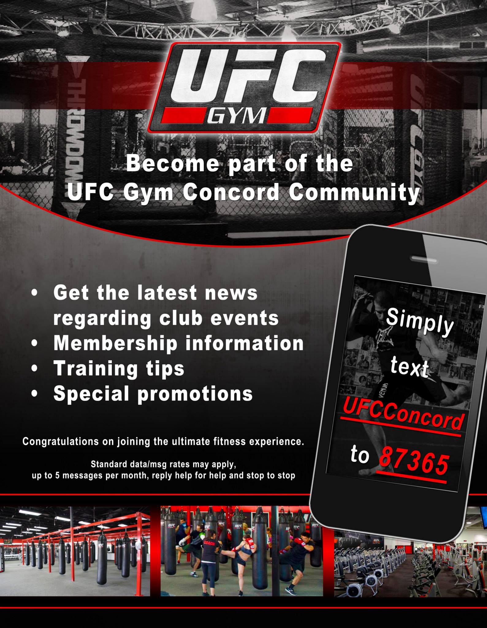 UFC Flyer