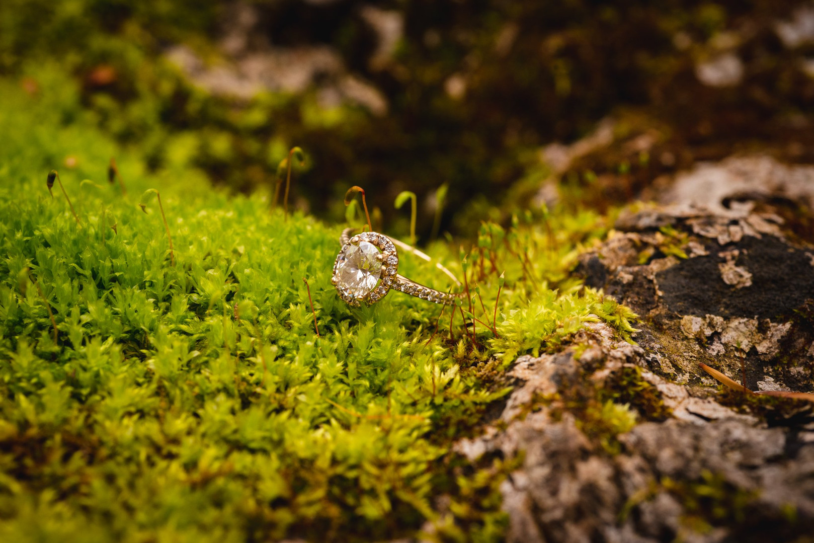 engagement ring on moss