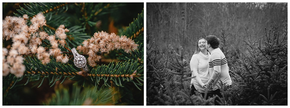 engagement ring detail and a cute couple kissing among christmas trees for their engagement portraits at Valley Falls in Vernon CT