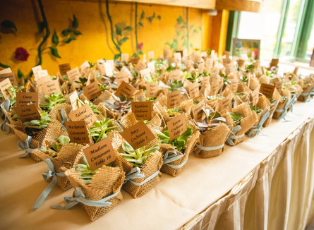 succulent wedding favors and seating cards at Pond House Cafe wedding