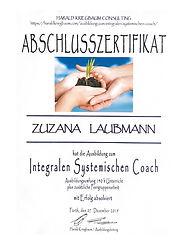 Zertifikat Systemische Beratung Harald Kriegbaum