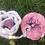Thumbnail: Placenta für Rituale und Geburtsvorbereitung