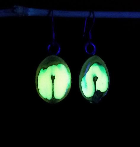 Glow Nut Earrings