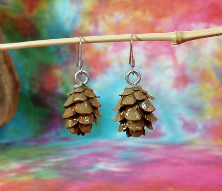 Hemlock Cone Earrings
