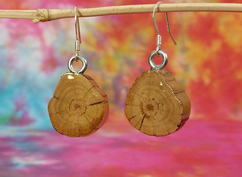 Mountain Laurel End Grain Earrings
