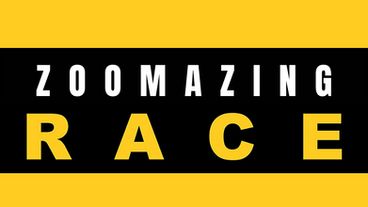 ZOOMAZING.png
