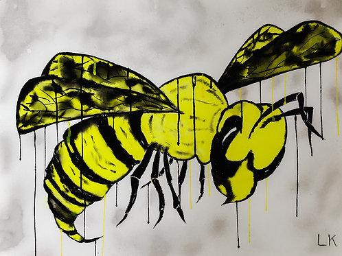 From the Hornets Nest II
