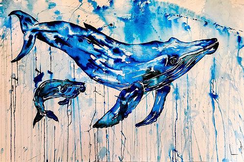 #Whale #Calf 1.0