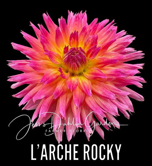 L'Arche Rocky