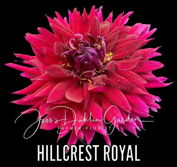 Hillcrest Royal
