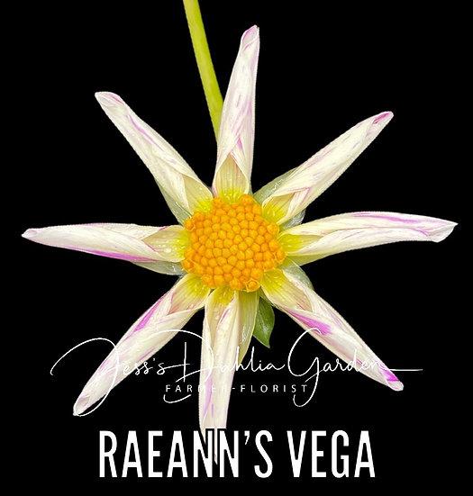 RaeAnn's Vega