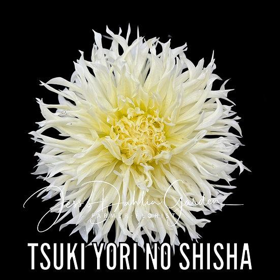 Tsuki Yori No Shisha