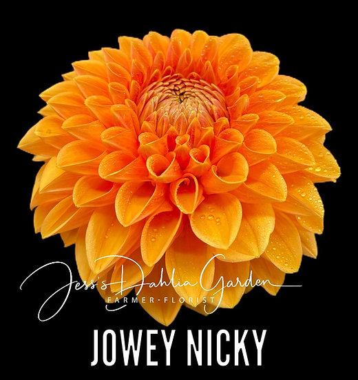 Jowey Nicky