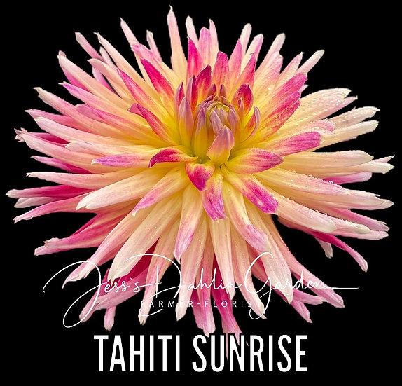 Tahiti Sunrise