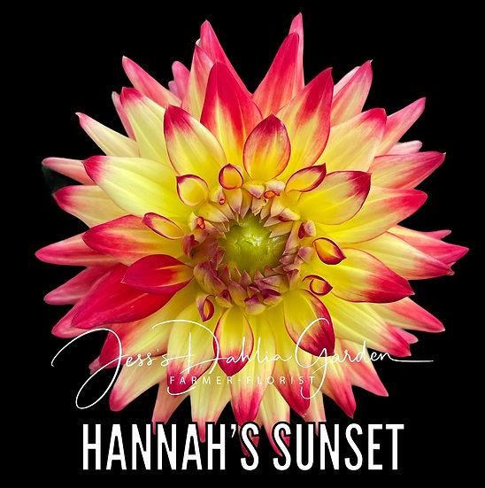 Hannah's Sunset