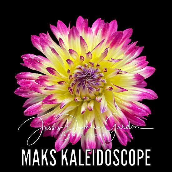 Maks Kaleidoscope