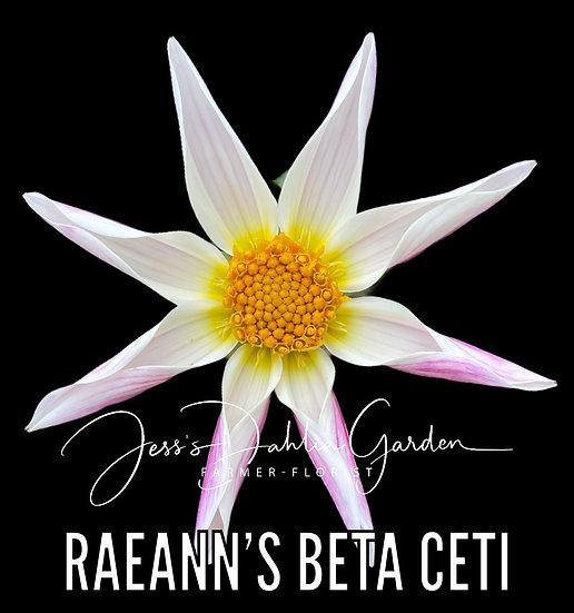 RaeAnn's Beta Ceti
