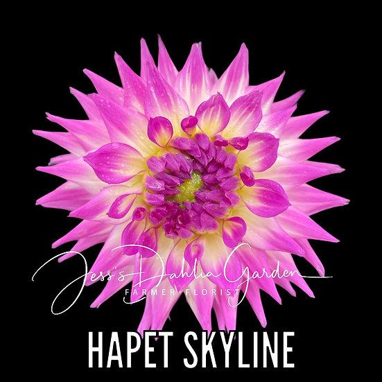 Hapet Skyline