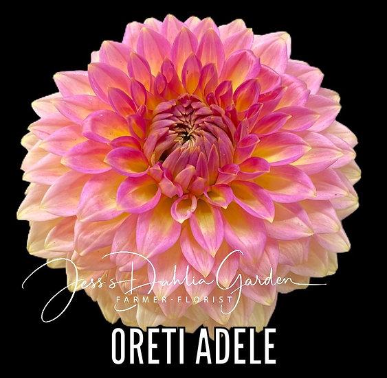 Oreti Adele
