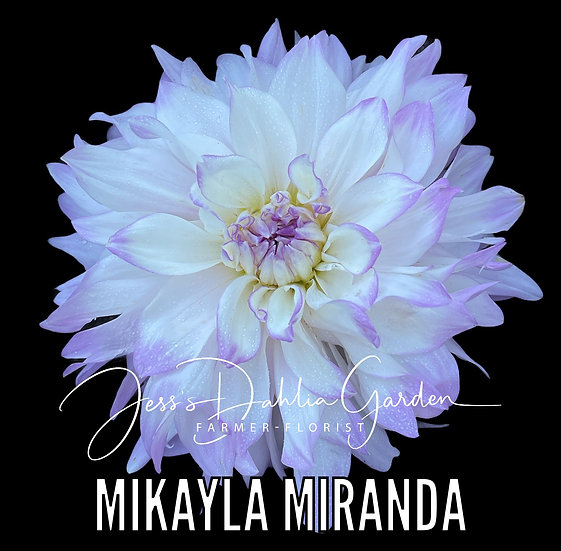 Mikayla Miranda