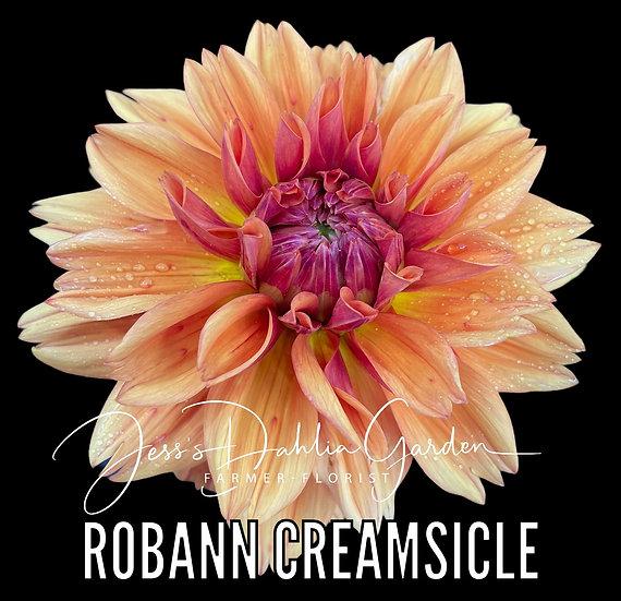 RobAnn Creamsicle