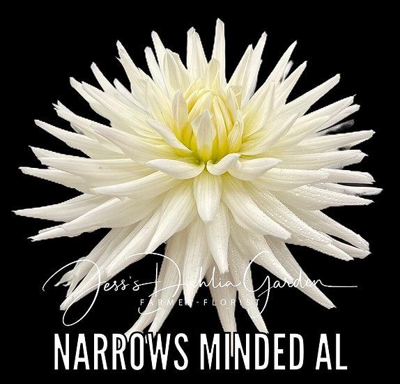 Narrows Minded Al