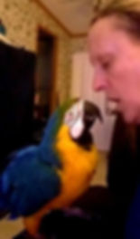 Oscar and mom sing together too