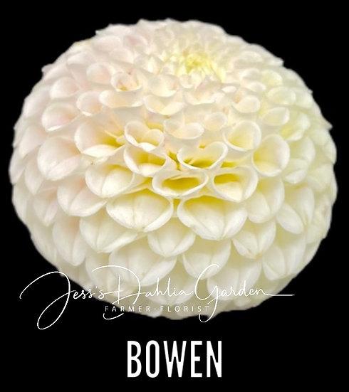 Bowen