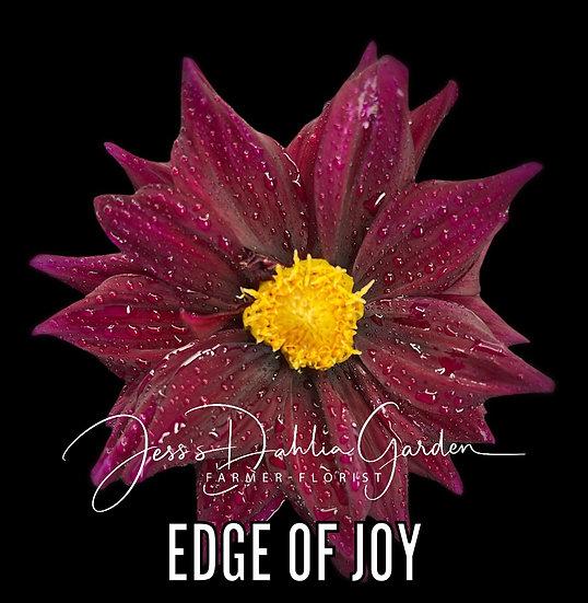 Edge of Joy