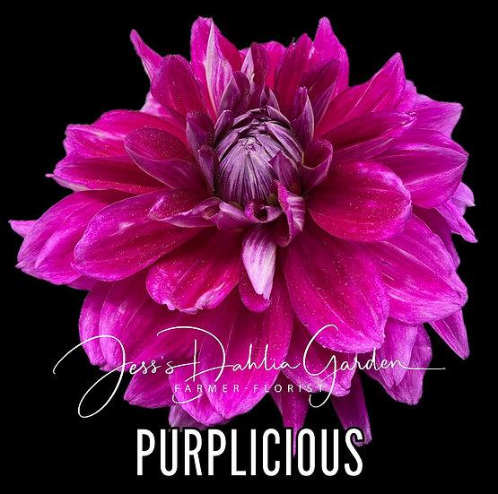 Purplicious