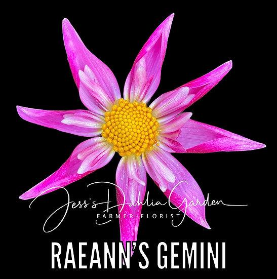 RaeAnn's Gemini