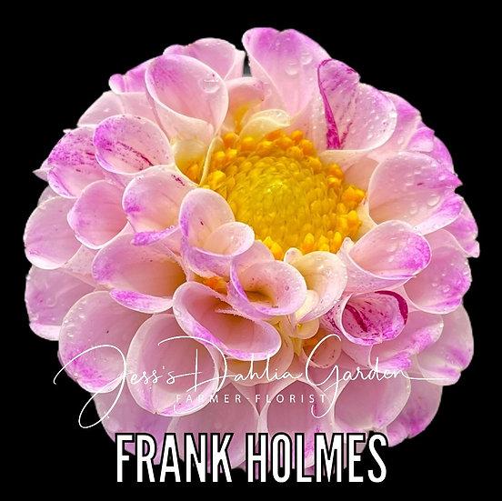 Frank Holmes