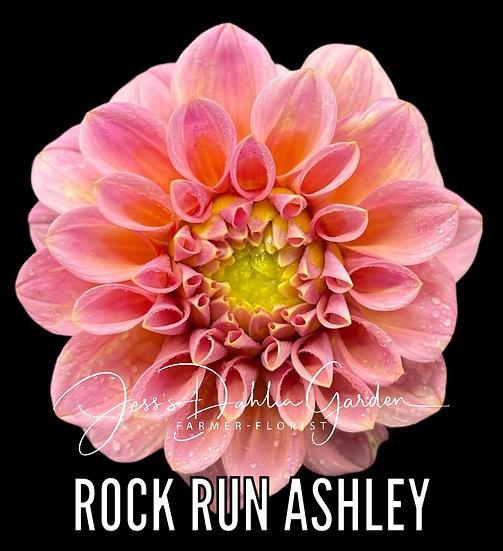 Rock Run Ashley