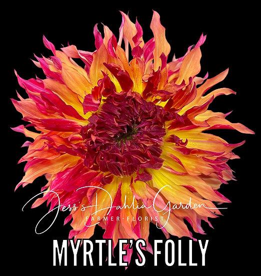 Myrtle's Folly