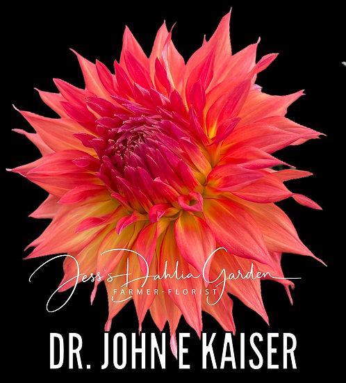 Dr. John E Kaiser