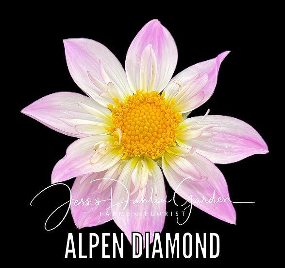 Alpen Diamond