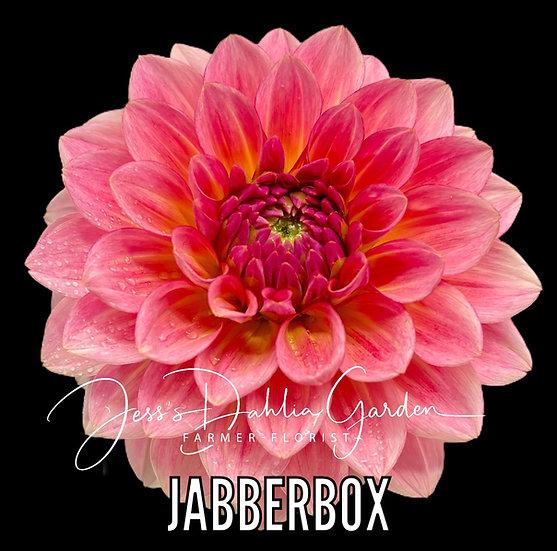Jabberbox